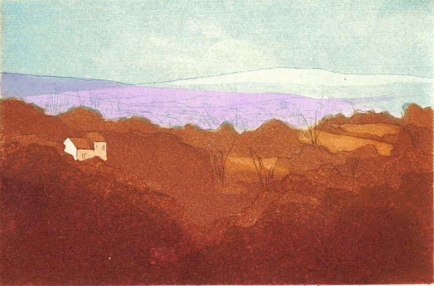 Distant Hills_copyright David T. Bowyer