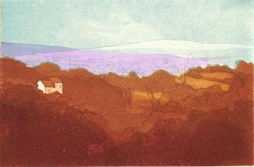 Distant Hills_copyright David T. Bowyer